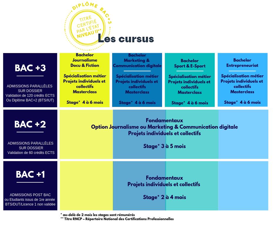 schema cursus W